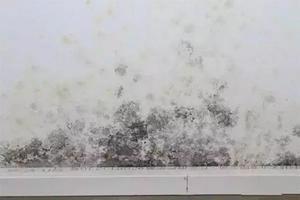 天花板大面积发霉的原因 房顶发霉是楼上渗水吗 房顶有霉斑的危害