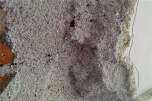 沙灰墙可以直接涂料吗 沙灰墙如何贴瓷砖 沙灰墙怎么打孔上螺丝