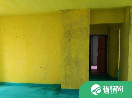 墙固是什么?什么时候刷墙固?墙固有什么作用?